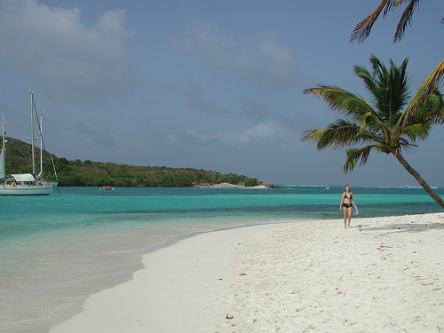 Tobago Cays Beach